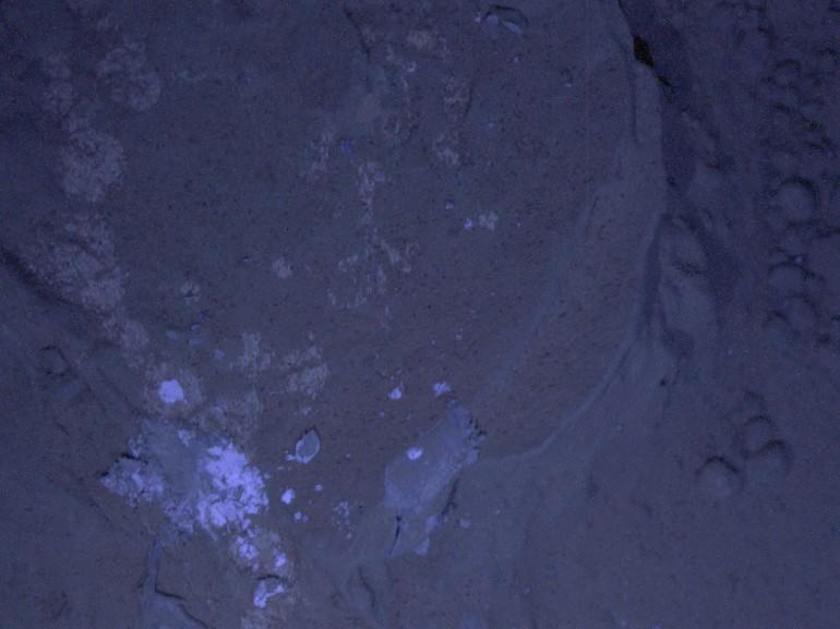 Ultraviyole Işık Altında MARS' ta kayalar