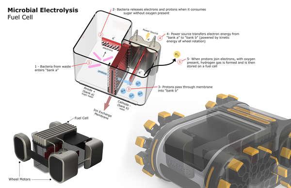 Mikrobiyal Yakıt Hücresi - Gerçek Bilim