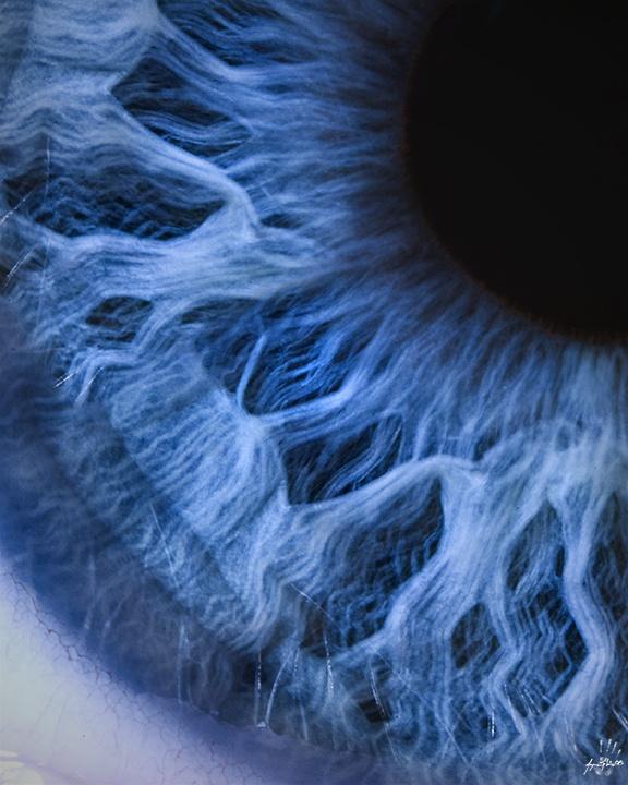 gözün mavisi