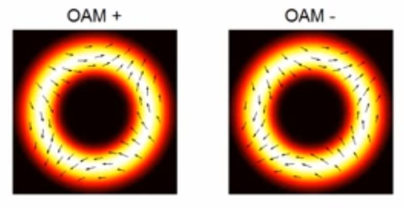 oam süper hızlı fiber