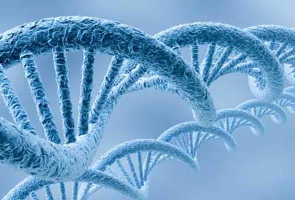 gen terapisi hiv terapi-gerçek bilim