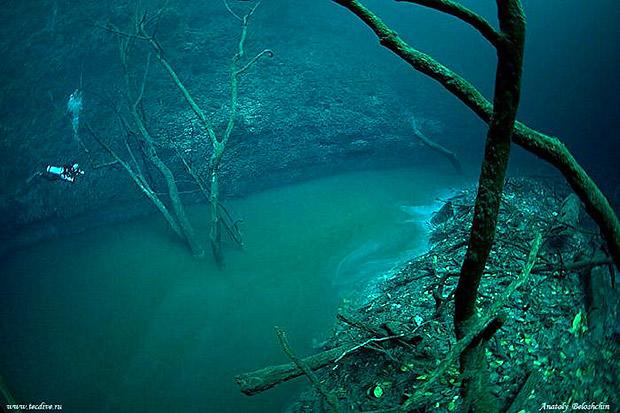 haloklin nehir-gerçek bilim