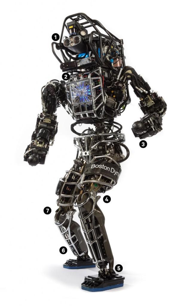atlas robot - gerçek bilim