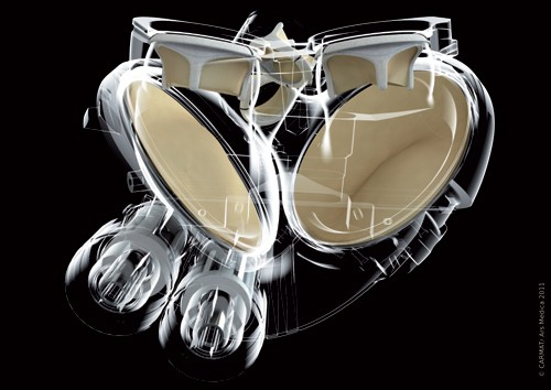 carmat-yapay kalp gerçek bilim