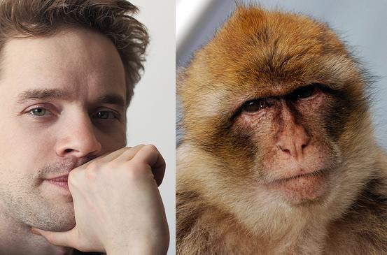 insan maymuna karşı