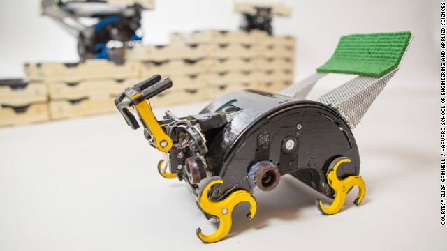 termit robot harvard