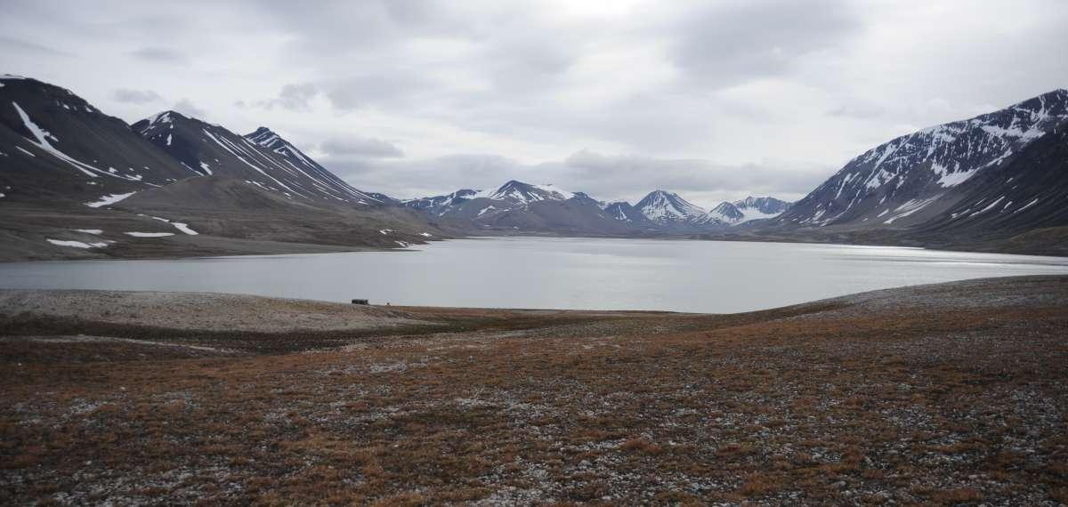 Arktik Göllerde Yaşayabilen Çok Küçük Virüsler Keşfedildi