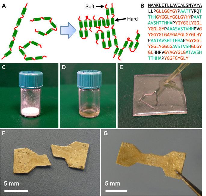 kendi kendini su ile onaran biyoplastik