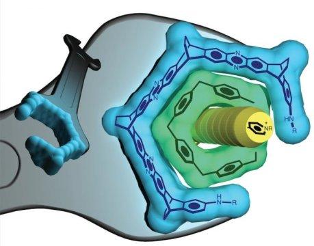 nano ingiliz anahtarı-gerçek bilim
