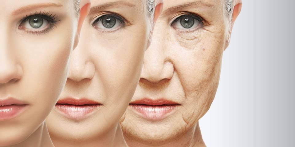 Alzheimer İçin Geliştirilen Bir İlacın Tesadüfen Yaşlanmayı Geciktirdiği Bulundu