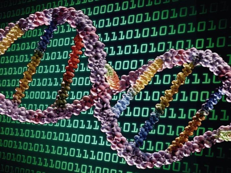 DNA depolama