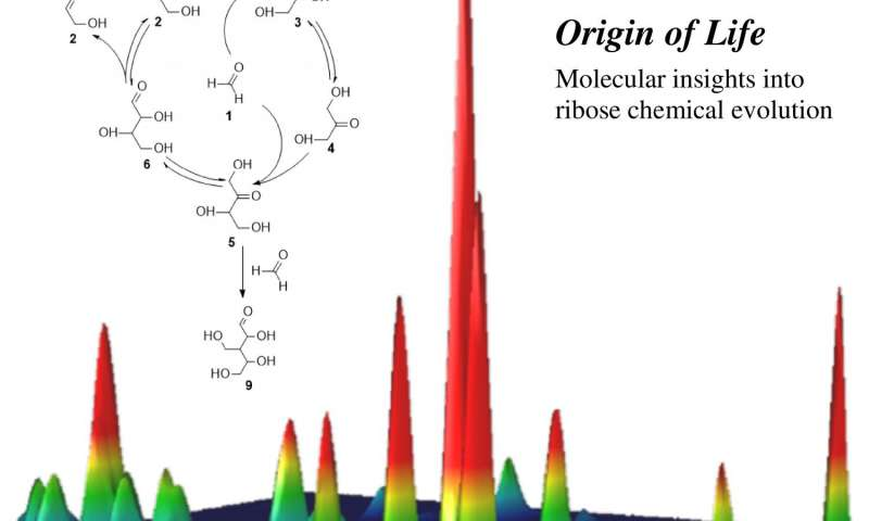 RNA asteroit-gerçekbilim