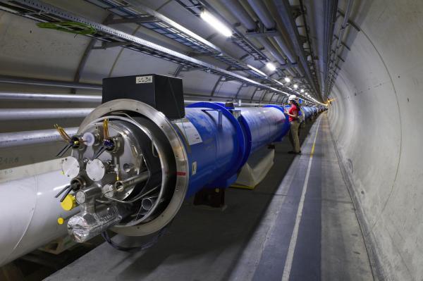 Gelinciğin kabloları kemirmesi nedeniyle LHC güç kesintisi yaşandı.