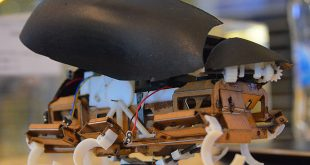 jumproach-zıplayan robot