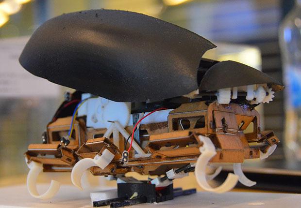 zıplayan robot hamam ile ilgili görsel sonucu
