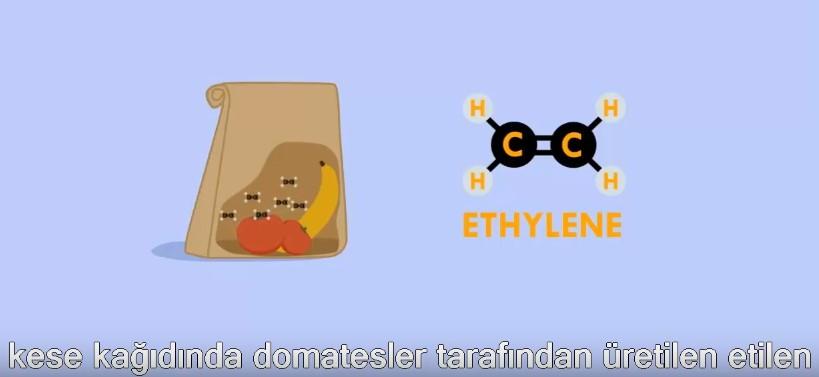 Hayatı Kolaylaştıracak Kimyasal Bilgiler -1 Video