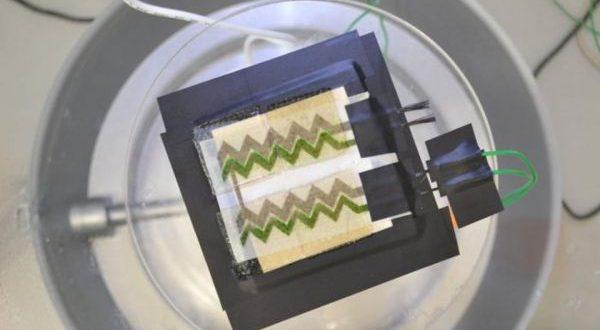 Siyano Bakterilerden Kağıt Güneş Pili Yapıldı