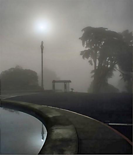 Paralakslar bu örnekte görüldüğü gibi, suda yansıyan sokak lambasının üstündeki güneş gibi görünür.