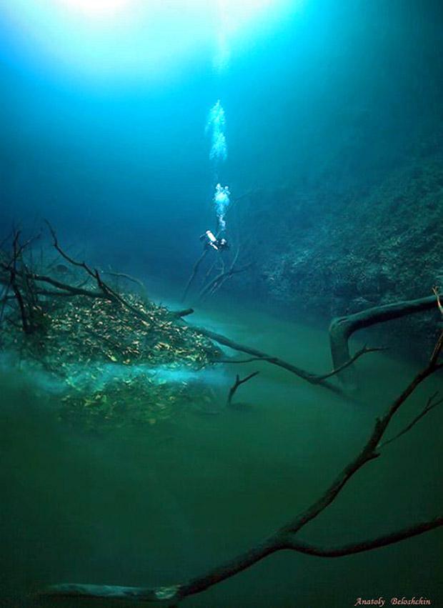 suyun altındaki mucize-gerçek bilim