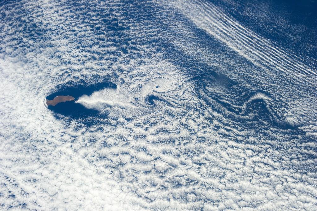 Guadalupe-adası kaliforniya