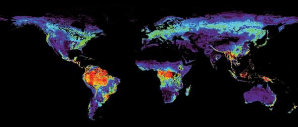 termal harita