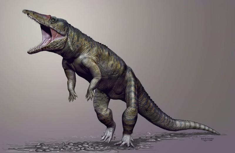 Dinozorlardan Önceki Baskın Predatör : Timsahların Atası Carnufex
