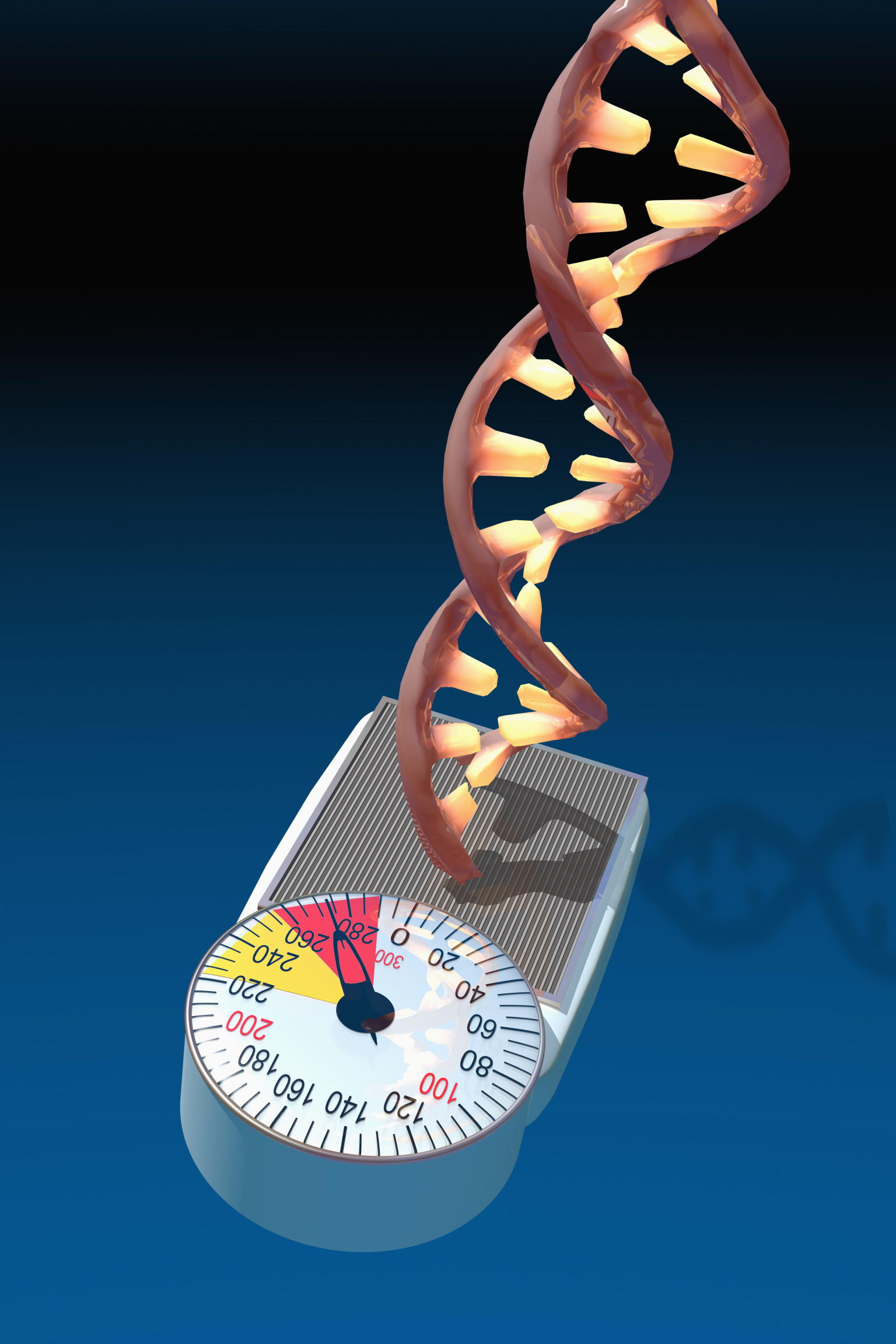 Biomedical illustration of a DNA molecule on a bathroom scale illustrating the concept of a fat gene as a genetic predisposition toward obesity.