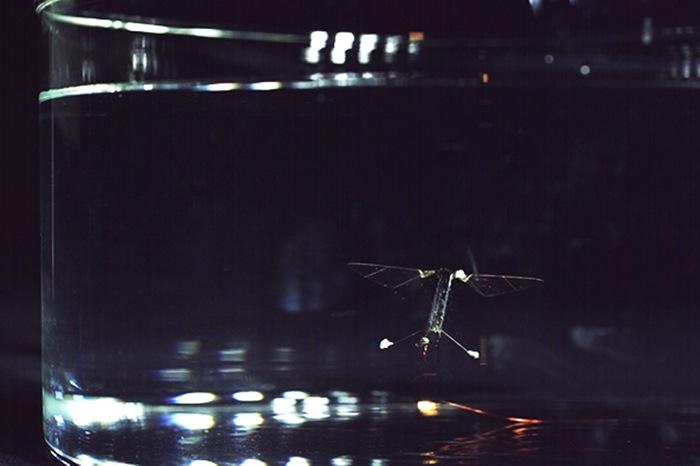 yüzen uçan robot