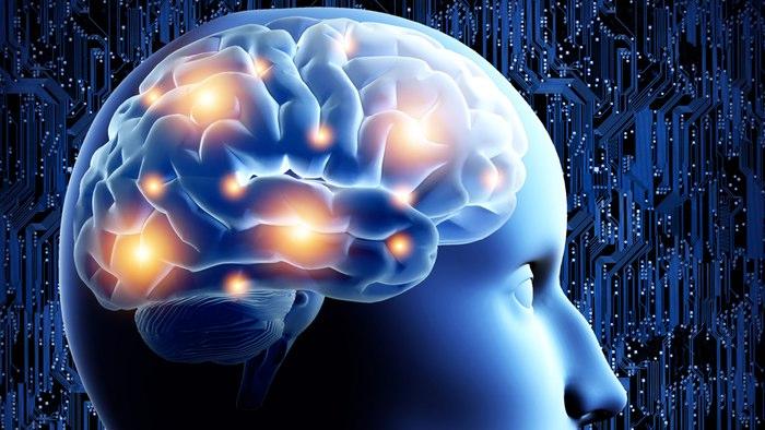 Koma Hastalarının EEG Taramalarında Gizli Bilinç Tespit Edildi