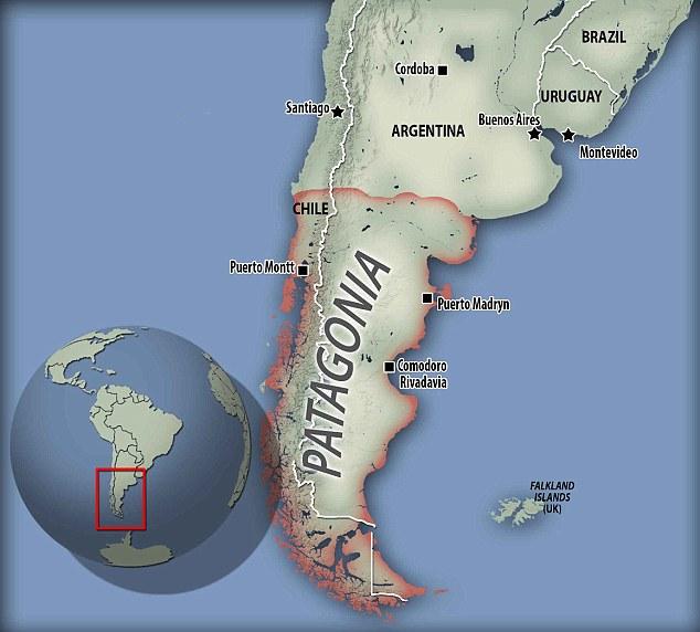 patagonya fosil