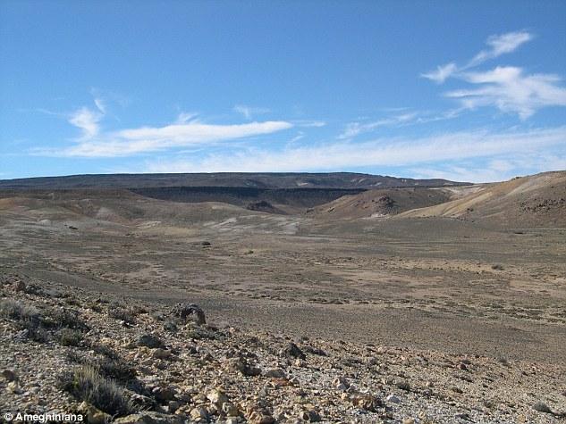 patagonya fosiler
