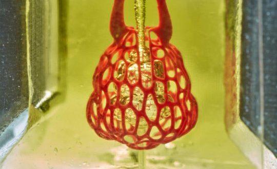 3D Organ Biyo Yazıcılardaki En Büyük Zorluk Aşıldı