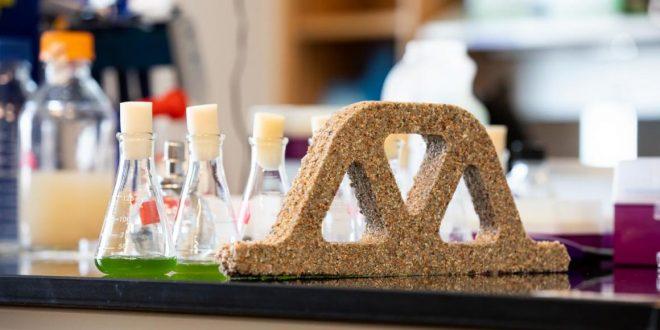 Siyano Bakteri ve Kum Sayesinde, Kendini Onarabilen Beton Yapıldı