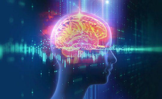 Bilim İnsanları, Beynin Anıları Hatırlarken Aynı Nöronları Kullandığını Keşfetti